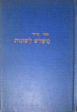 Mishalosh-leshonot-cover.jpg